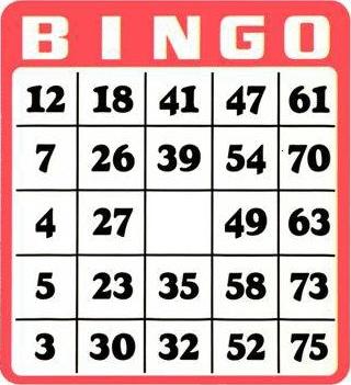régles du jeu Bingo grille-de-bingo-75-boules